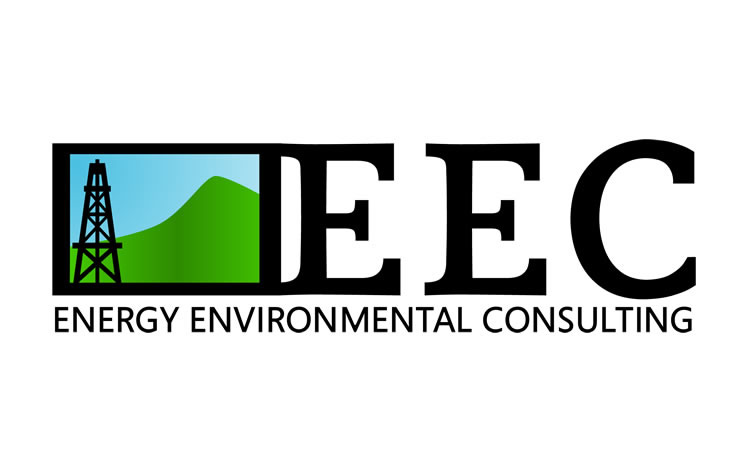 Energy Environmental Consulting Logo Design Project