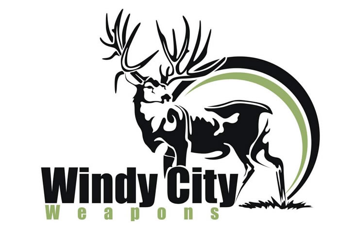 Windy City Weapons Logo Design Project Waves Web Design