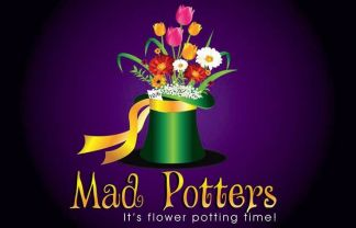 Mad Potters